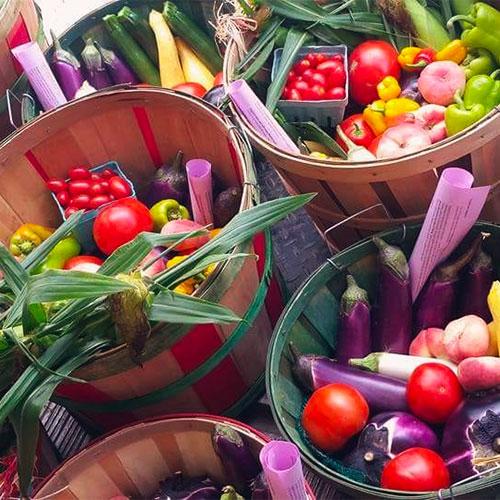 Jones Family Farm Markets, PYO Strawberries, CSA, Christmas Trees